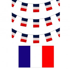 French Bunting + Flag