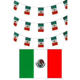 Mexican Bunting + Flag
