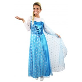 Adult Ladies Snow Princess Fancy Dress Costume