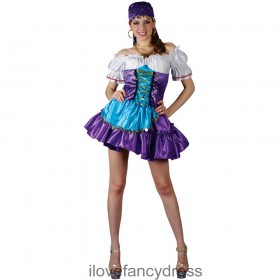 Ladies Gypsy Fortune Teller Costume