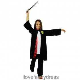 Childs Witch/Wizard Costume