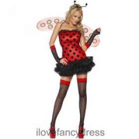 Ladies Ladybug Costume