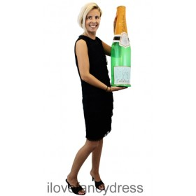 Inflatable Celebration Champagne Bottle 73cm