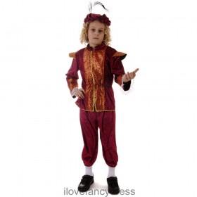 Rich Renaissance Tudor Boy School Costume
