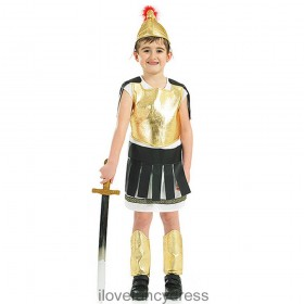 Roman Solider / Greek Gladiator Costume