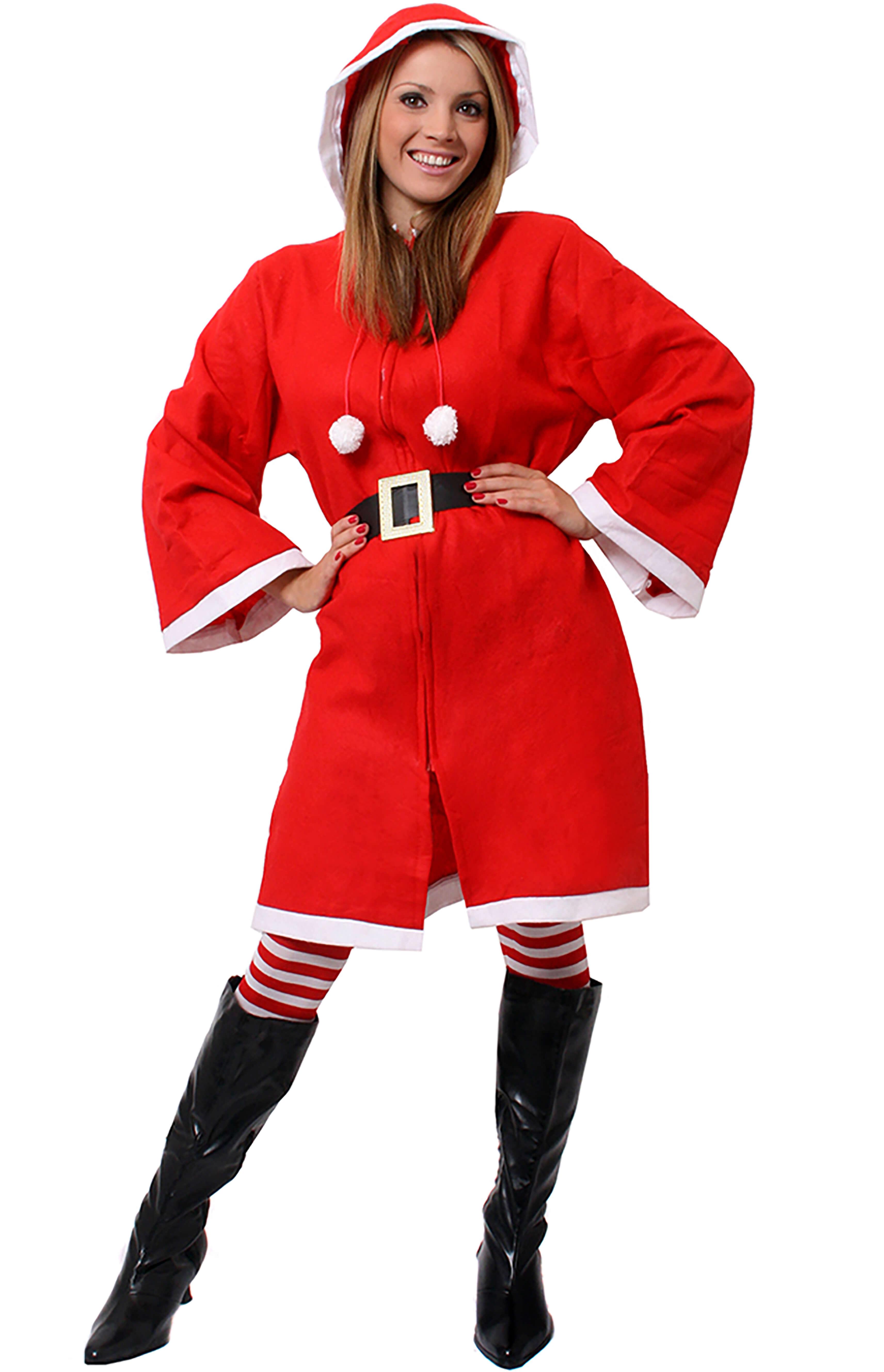 Ladies Miss Claus Christmas Costume